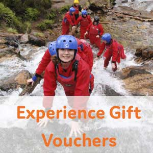 Experience gift vouchers